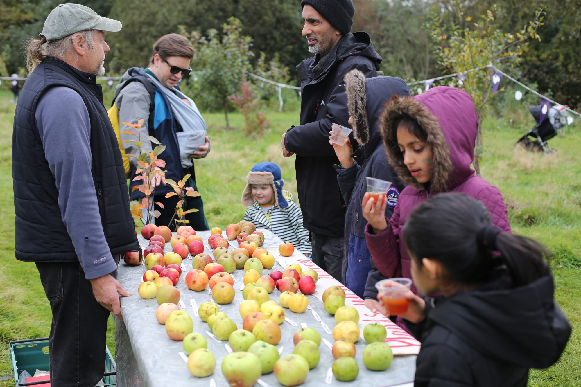 A table of apples with adults and children standing around identifying which kind of apple they are